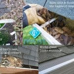 Leaf Guards for Gutters